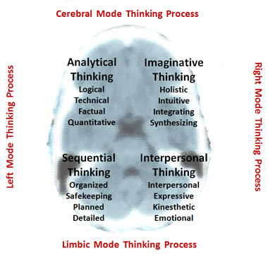 left and right brain learning styles
